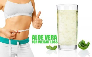 Aloe-Vera-for-Weight-Loss