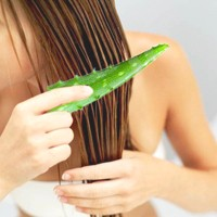 aloe-vera-for-a-better-hair