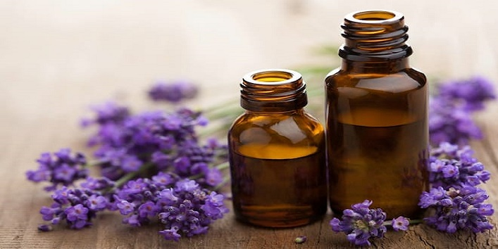 Lavender-oil-for-treating-inflammation-and-scalp-odor