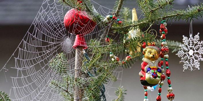 Weird decorations