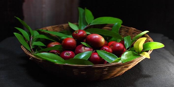 Health Benefits of Kokum