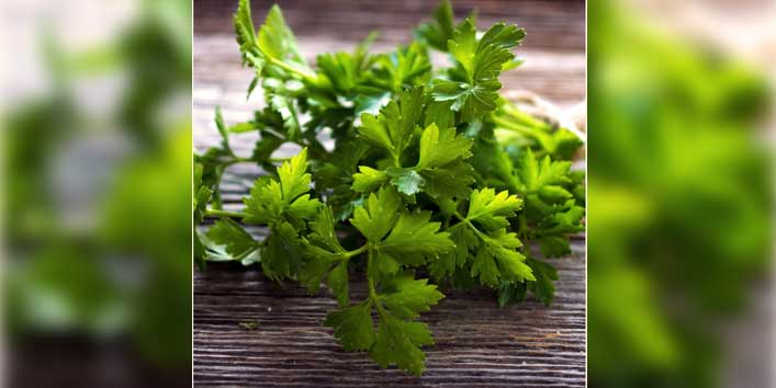 Eat Parsley to Get Rid of the Puffy Eyes!