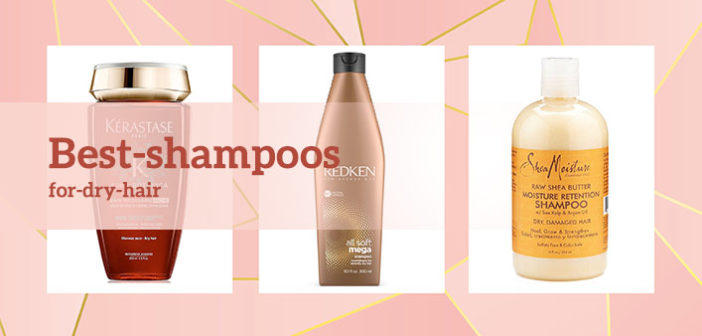 Check out the Best Shampoos for Dry Hair Suggested by Experts