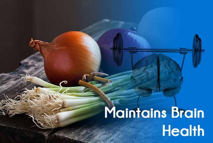 Maintains Brain Health