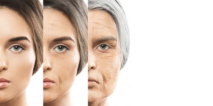 Combats-aging-process