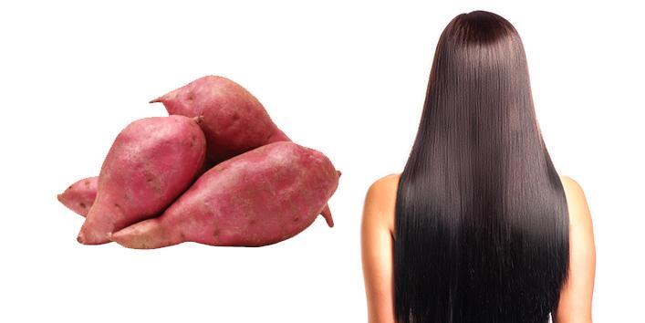 sweet patato