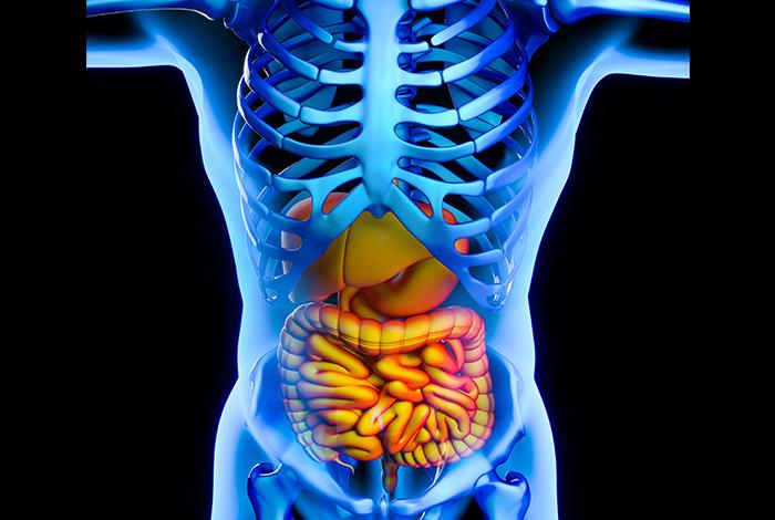 Stimulates-digestion