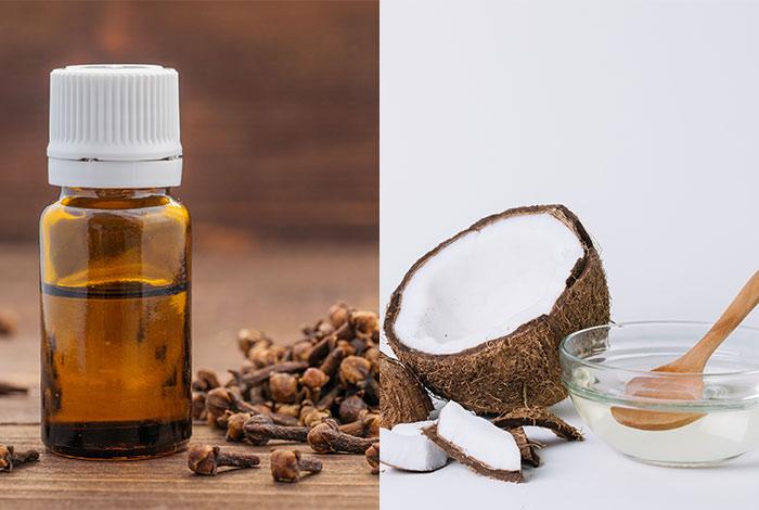 Coconut-oil-and-clove-oil