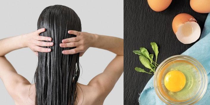Apply-eggs-on-hair