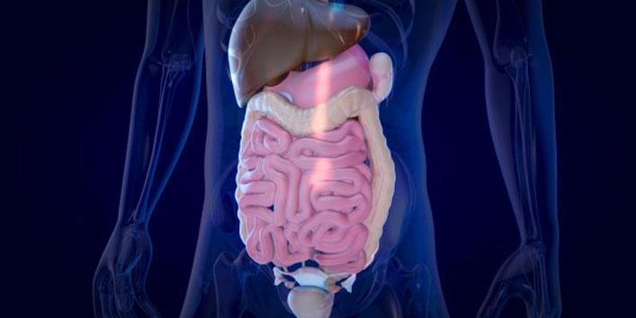 Improves-digestion