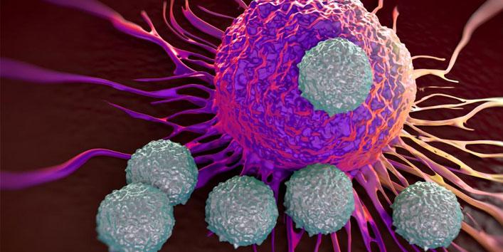 Anticancer-Potential