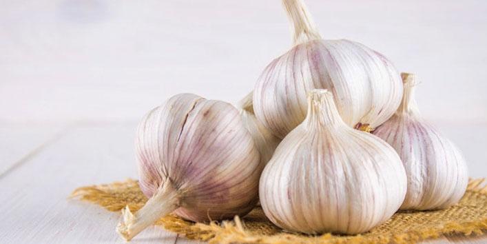Garlic-has-rich-antioxidant-content