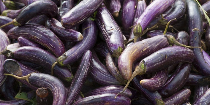 Risks-associated-with-eggplants