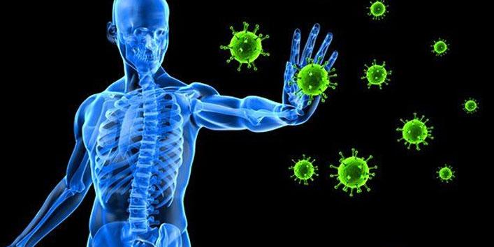 Promotes-maternal-immune-activation